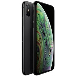 iPhone XS 512Gb Usato Grado A Garanzia 1 anno Grey