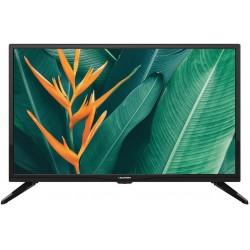 23,6'' LED HD TV 720p con DVB-T2 (H.265 Main 10) e USB